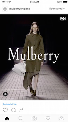 vertical_mulberry